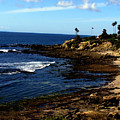 Cliff Drive Laguna Beach by Christine Sullivan Cuozzo