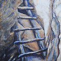 Cliff Palace Ladder by M Schaefer