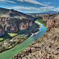 Cliff View Of Big Bend Texas National Park And Rio Grande  by Elaine Plesser