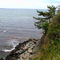 Cliffwalk Newport by Lennie Malvone