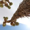 Climb This by Justin Hiatt