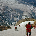 T-204805-climbing Party Mt. Rainier  by Ed  Cooper Photography
