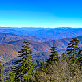 Clingmans Dome Panorama by Steve Samples