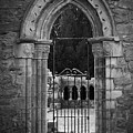 Cloister View Cong Abbey Cong Ireland by Teresa Mucha