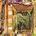 Clos Du Peyronnet Gardens Provence by David Lloyd Glover