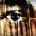 Arrested - Visceral by Beto Machado