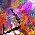 Close Up Dragonfly Insect Macro  by PixBreak Art