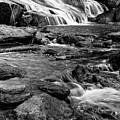 Close Up Of Reedy Falls In South Carolina B W by Carol Montoya