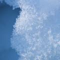 Close Up Of Snow by Arturo Vazquez