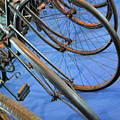 Close Up On Many Wheels From Bicycles  by Oana Unciuleanu