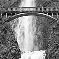 Close Up View Of Multnomah Falls by Jamie Pham