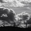 Closed Gate - 2 by MH Ramona Swift