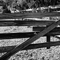 Closed Gate by Robert Wilder Jr