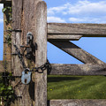 Closed Paddock by Joana Kruse