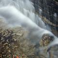 Closeup Maple Leaf And Decew Falls, St by Darwin Wiggett