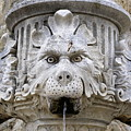 Closeup Of A Public Fountain In Dubrovnik Croatia by Richard Rosenshein