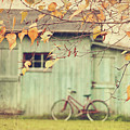 Closeup Of Leaves With Old Barn In Background by Sandra Cunningham