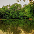 Closter Nature Center by Jody Lane