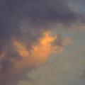 Cloud Elvis  by Simon Kennedy