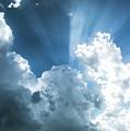 Cloud Light  by Paula OMalley