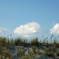 Cloud Trio And Dunes - Huntington Beach Sc by Suzanne Gaff