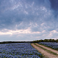 Cloud Vortex Over Bluebonnets At Muleshoe Bend Recreation Area - Spicewood Texas Hill Country by Silvio Ligutti