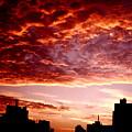 Clouded Fury by Ariane Moshayedi