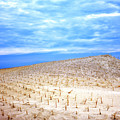 Clouds And Dunes On Long Beach Island by John Rizzuto