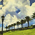 Clouds And Line Of Palms by Alice Gipson