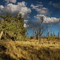 Clouds Over Mesa Verde by Kunal Mehra