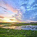 Clouds Over The Marsh 4 by Bonfire Photography