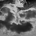 Cloudscape Xvii Bw by David Gordon