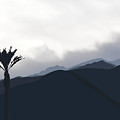 Cloudy San Jacinto Mountain With Palm by Stan  Magnan