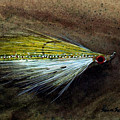 Clouser Minnow by Sean Seal