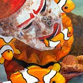 Clown Fish by Catherine G McElroy