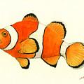 Clown Fish by Juan Bosco