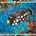 Clown Triggerfish-bordered by Sue Duda