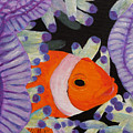 Clownfish by Anne Marie Brown