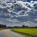 Clyde Fitzgerald Road Scenery by Matt Taylor