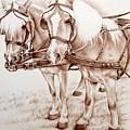 Coach Horses by Nicole Zeug