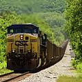 Coal Train by Bernd Billmayer