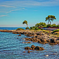 Coast At Antibes France Dsc02221 by Greg Kluempers