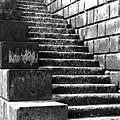 Coast - Sea Stairs by Mary Bassett