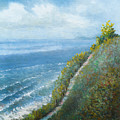 Coast Trail by Douglas Castleman
