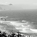 Coastal Bandw by Jane Merrit