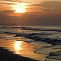 Coastal Carolina by Karen Wiles