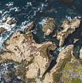 Coastal Crevices by David Levy
