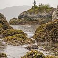 Coastal Exploration by Kristopher Schoenleber