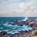 Coastal Landscape by MotionAge Designs