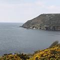 Coastal Path Cornwall by Lauri Novak